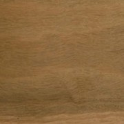 Queensland Spotted Gum Solid Timber Flooring Floormania