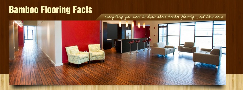 Find out if bamboo flooring is right for you from this site.
