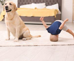 baby friendly floors
