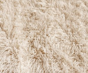 luxury wool carpet