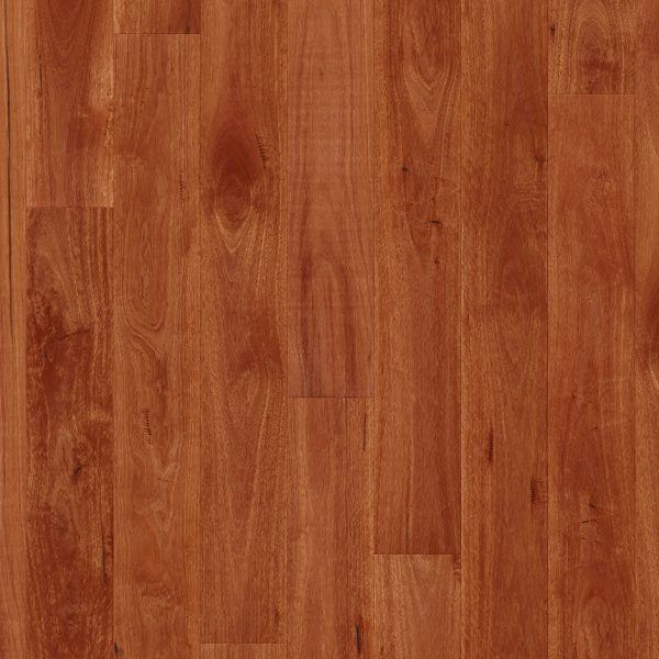 Quick-Step Colonial Plus Sydney Blue Gum